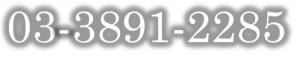 03-3891-2285