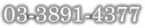 03-3891-4377
